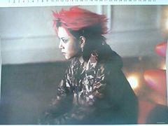 X JAPAN hide � �X�^�[ �q�f �s���N�X�p�C�_�[