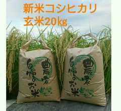 ほどよい甘みと粘りの茨城28年産新米コシヒカリ玄米20�s