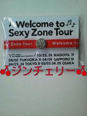 Welcome to Sexy Zone ��������w�A�S�� ��X�� �������l �V�i