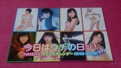 ����ͳ��̓�! NMB48 ���ٶ���ް 2013-2014