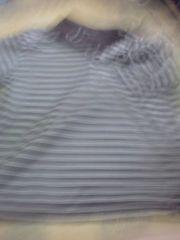 4L茶色のボーダー柄のポロシャツ(ポケットなし)