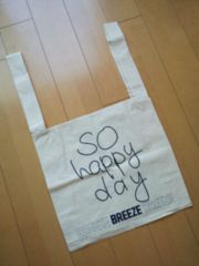 新品happybag☆BREEZE