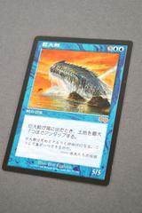 MTG ����~ Great Whale �}�W�b�N�U�M���U�����O �E���U�Y�T�[�K