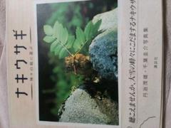 写真集【ナキウサギ】神々の庭に遊ぶ