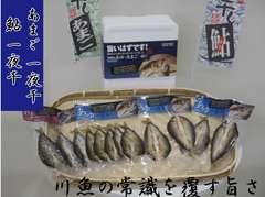 【送料無料】あゆ あまご一夜干 紀州南高梅酢使用/12尾セット