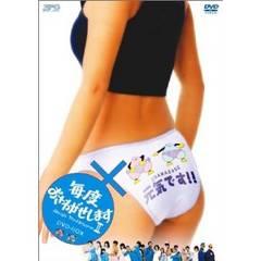 ■DVD『毎度おさわがせします2 DVD-BOX』