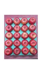 青森りんご「葉とらず・ふじ」1箱20個入 Mサイズ