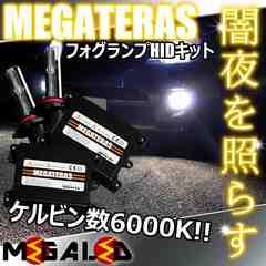 超LED】エルグランドE52系後期/LEDヘッド車除/フォグランプHIDキット/H8/6000K
