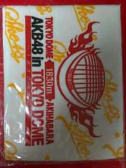 SKE48「TOKYO DOME」コンサートタオル 2012 新品