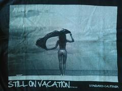 STANDARDCALIFORNIA×REEF TシャツサイズS スタンダードカリフォルニアsurf限定