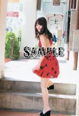 【写真】L判: AKB48/柏木由紀502