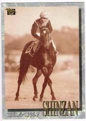 バンダイ1997 Legendシンザンカード10枚 競馬