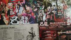 己龍2011〜14年フライヤー3枚◆ラスト1点即決