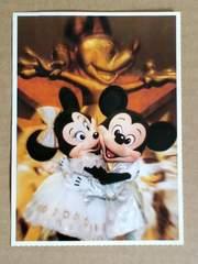 ★FUNderful Disney(DTL)★ミキミニ★ポストカード★非売品?