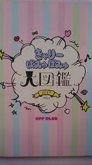 きゃりーぱみゅぱみゅ 大図鑑 2013 Vol.1