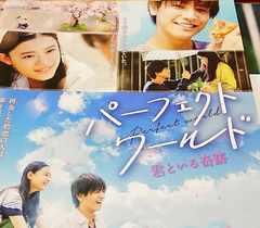 映画『パーフェクトワールド(君といる奇跡)』フライヤー5枚!岩田剛典
