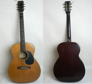 Lite custom F100 フォークギター