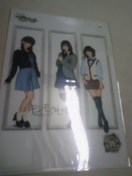 AKB48 チームサプライズ キンモクセイ ホール限定クリアファイル