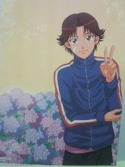 ★テニスの王子様PremiumCellSheet�BNo.P-1菊丸英二