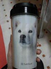 新品 お父さん犬 カイくん タンブラー 北海道犬