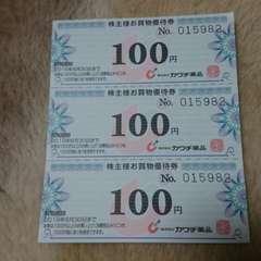カワチ薬品 株主優待券 100円3枚