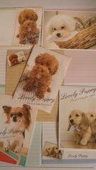 犬 Lovely Puppy バラレターセット5種D5