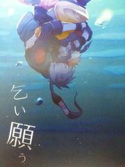 NARUTO/カカナル本