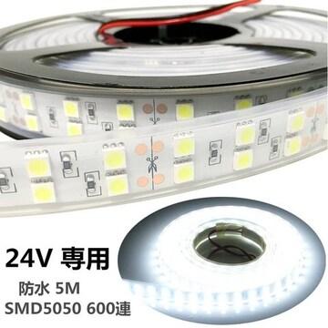 LEDテープ 24V 防水  5M ホワイト SMD5050 600連