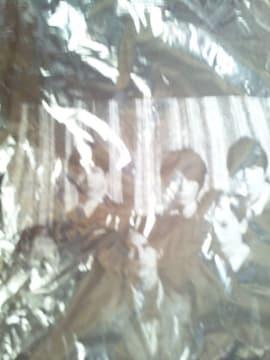 関ジャニ∞ DOME CONCERT 2009-2010 Tシャツ