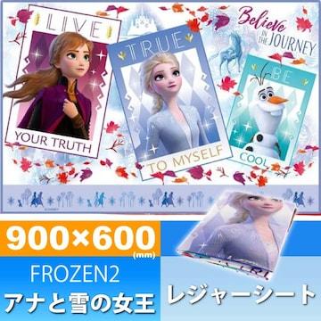 アナと雪の女王 FROZEN2 レジャーシート ござ90×60cm VS1 Sk600