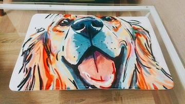 犬 ラグマット 床 マット カラフル
