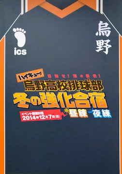 送料込み/ハイキュー!!2014年冬のファンイベントパンフレット
