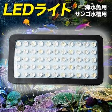 水槽 LED ライト 海水魚 サンゴ 水槽用 165w