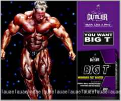 世界王者ジェイカトラーブランド!強力BIG T 筋肉増強 究極 筋トレ サプリメント