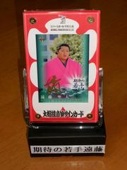 BBM2014 遠藤 大相撲直筆サインカード ケース付き