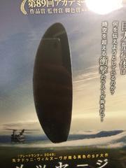 日本製正規版 映画 メッセージ