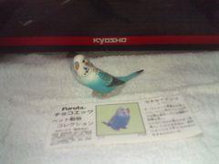 フルタ   ペット動物コレクション1           セキセイインコ  ブルー