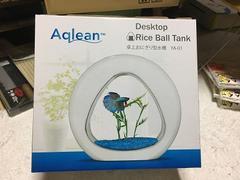 卓上おにぎり型水槽Aqlean