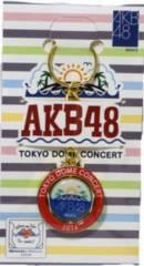 キーホルダー●AKB48●東京ドーム 単独ライブ●新品●残1