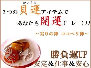 ココペリ貝運★安定・仕事・安心・勝負★迅速効果★パワーストーン/占