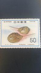 カブトガニ50円切手1枚新品未使用品