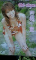 若槻千夏DVD「Chi−chan」