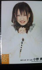 SKE48「私服写真」小野晴香 5枚セット
