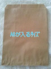 R70サイズ未晒無地平袋20枚★小物発送にも役立つ紙袋