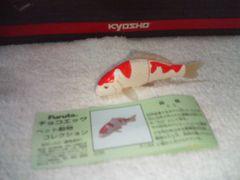 フルタ ペット動物2  錦鯉 紅白