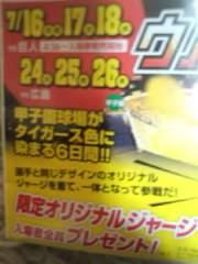 【ウル虎】7/18(水)阪神vs巨人ライト外野席2連番通路真横