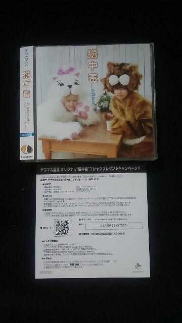 テゴマス 猫中毒 初回限定盤 DVD 帯付き 即決 手越祐也   < タレントグッズの